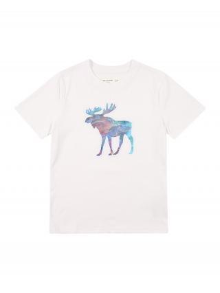 Abercrombie & Fitch Tričko  biela / zmiešané farby pánské 110-116
