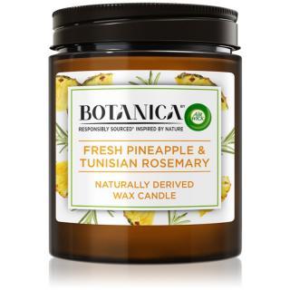Air Wick Botanica Fresh Pineapple & Tunisian Rosemary vonná sviečka 205 g 205 g
