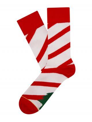 Cheerio Ponožky Candy Tree  biela / zelená / červená dámské 36-40