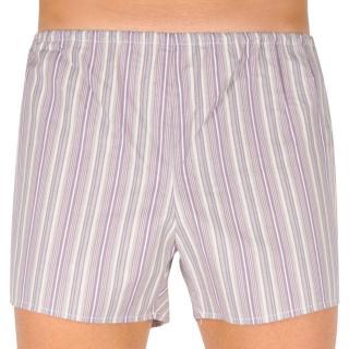 Classic mens shorts Foltín brown with oversized stripes pánské Other 6XL