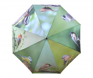 Dáždnik Birds Pestrofarebná