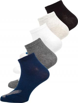 Farebné pánske ponožky Bolf  X10171-5P 5 PACK 44-46
