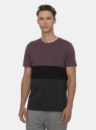 Fialovo-šedé pánske tričko Ragwear - S pánské sivá S
