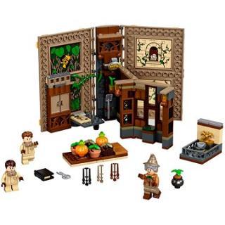 LEGO Harry Potter TM 76384 Kouzelné momenty z Bradavic: Hodina bylinkářství
