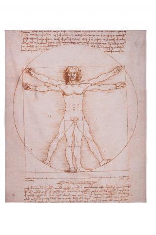 MuseARTa - Uterák Leonardo da Vinci - The Vitruvian Man viacfarebná 144cm x 180cm