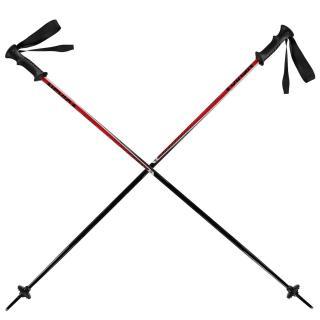 Nevica Meribel Ski Pole Set Other 110 cm
