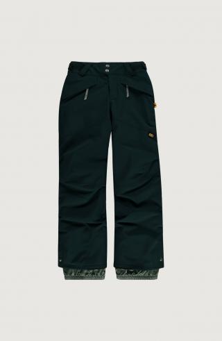 ONEILL Športové nohavice Anvil  zelená pánské 104