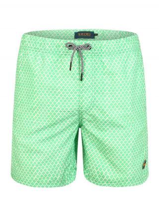 Shiwi Plavecké šortky  zelená pánské S