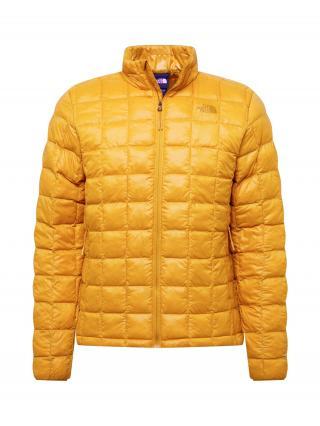THE NORTH FACE Zimná bunda  oranžová pánské S